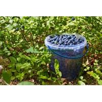 Плодосъёмник с заслонкой для ягод