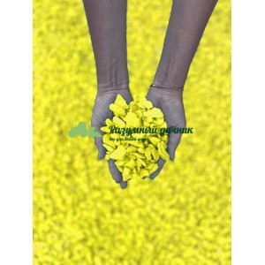 Декоративный мраморный щебень (5-20 мм), цвет желтый
